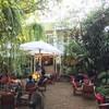 บรรยากาศ Fern Forest Cafe -