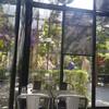 บรรยากาศ Sarah House Cafe' in Town
