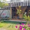 Nobu Growing space