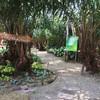 สวนสละอาทิตย์