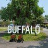 The Buffalo Cafe'