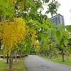 สวนสุขภาพเกาะลอย