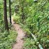 เส้นทางเดินกลับเข้าหมู่บ้าน