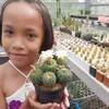 Cookierun Cactus