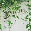 Bite Me Softly