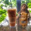รูปร้าน Monkey Cafe Bar & Bistro
