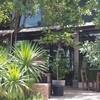 324 house bar cafe