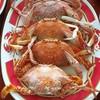 O.X. Seafood