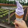 แวะชิมไอศครีมลาเวนเดอร์ ¥500 พร้อมถ่ายรูปสวยๆ กับป้าย farm tomita