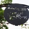 Monkey Tree Garden