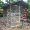 Platoo Bird Farm