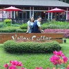 Valley Coffee & Lanna Resort
