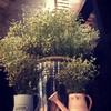 THE LOFT Coffee-Eatery-Bakery