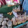 มีผลไม้จากชาวบ้านมาขาย