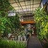 The Gardener Cafe'