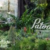 Patom Organic Living Thonglor