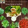 Organic 100% ผักปลอดสารพิษปลูกโดย Phloenview Fuison Restaurant