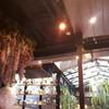 แต่งร้านแบบอยู่ท่ามกลางดงป่า^_^