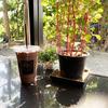 IMAGINE CAFE