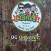 สวนผัก โอ้กะจู๋ The Circle Ratchapruk