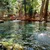 น้ำพุธรรมชาติบ้านท่าช้าง (น้ำผุดปากช่อง)