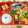 Salmon&Saba Shio/Teri