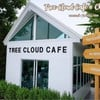 Tree Cloud Cafe