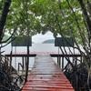 ปลายทางสะพานแดง