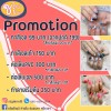 🎉 Promotion 🎊 ทำเล็บเจล - ทาสีเจล มือ 99.- (10นิ้ว) - ทาสีเจล เท้า 150.- (10นิ