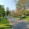 สวนจตุจักร