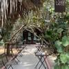 Prem Cafe In The Garden
