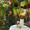 Lamour Cafe บ้านเหลือง