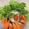 สลักผักปูอัดธัญญพืช