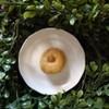 White Chocolate Macadamia Scone