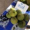 ร้านค้าตามทางเดินขายผลไม้ เช่น ส้มโอ