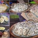 oyster  4 ชนิด