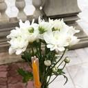 ข้างในตัววัดมีบริการ ธูป เทียน และดอกไม้ แล้วแต่ศรัทธาในการทำบุญนะคะ