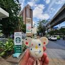 หมีน้อยสตาร์ @ Starbucks Sukumvit Hospital