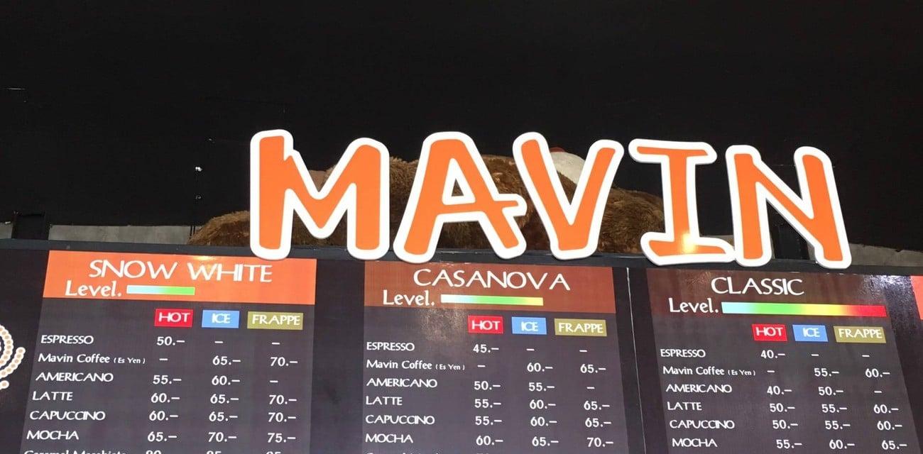 MAVIN Coffee Roaster