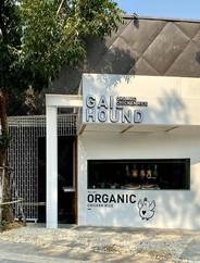 Gai Hound Organic Chicken Rice เดอะเซอร์เคิล ราชพฤกษ์ (ชั้น 1)