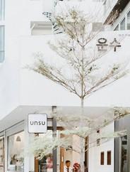 UNSU อุนซู - 운수