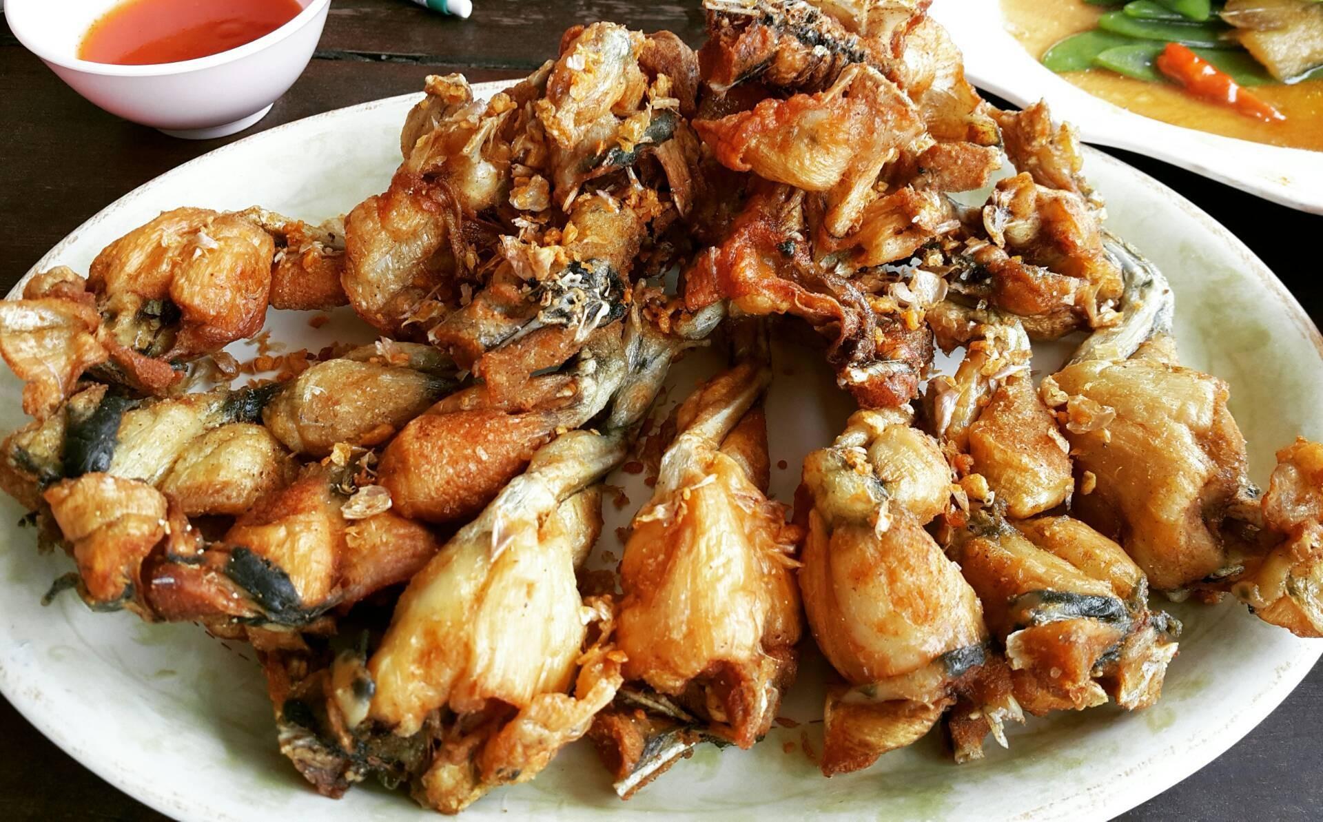กบทอดกระเทียม • เมนูเด็ด ชะ ของที่นี่ อร่อยจริงๆ ร้าน โก๊ขิว - Wongnai