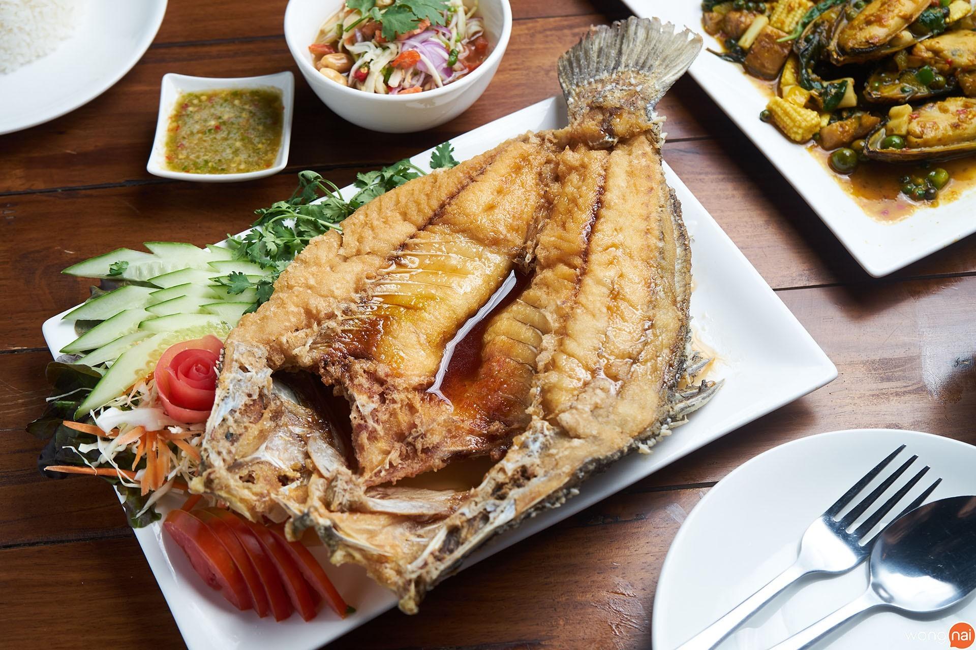 ปลากะพงทอดน้ำปลา ของร้าน 61 Cozy Garden Bistro