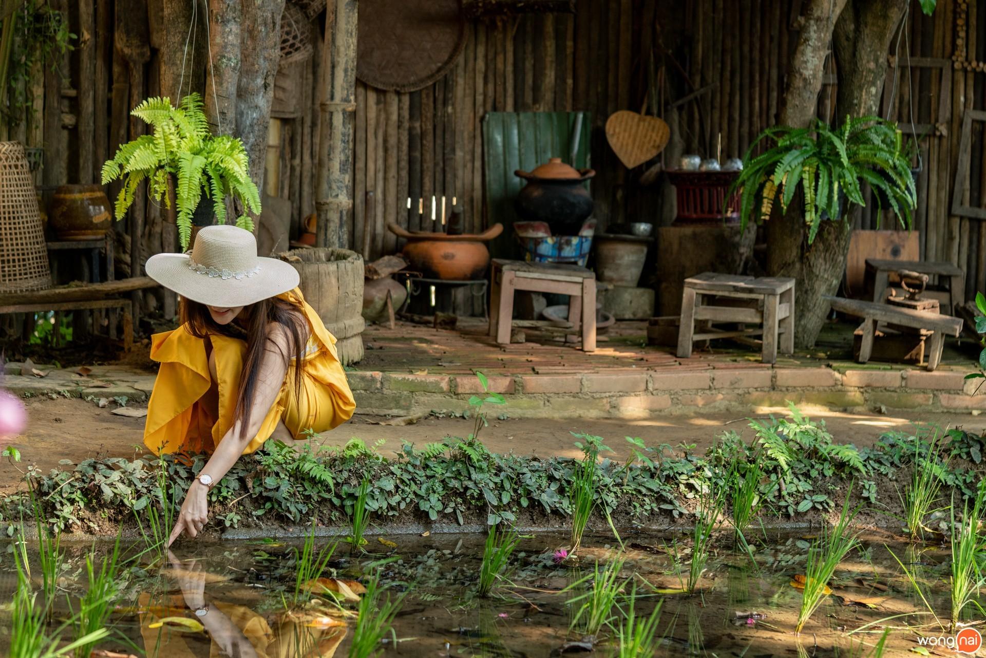 ที่เที่ยวเชียงใหม่, เที่ยวเชียงใหม่ , ร้านกาแฟเชียงใหม่ , วัดชัยมงคล , ที่เที่ยวริมแม่น้ำปิง , บ้านโบราณเชียงใหม่