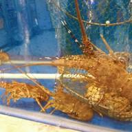 บรรยากาศ Shunde Seafood Cuisine