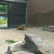 Green Spot Maruyama Zoo