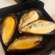 หอยแมลงภู่นิวซีแลนด์##1