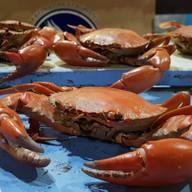 Yoktayal Seafood Buffet ท่าข้าม 28 แยก 32