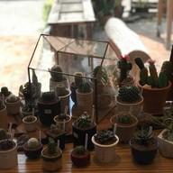 บรรยากาศ Tiny Tree Garden