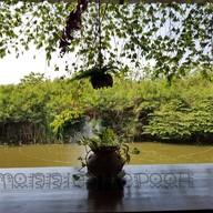 บรรยากาศ Baan Poon Cafe
